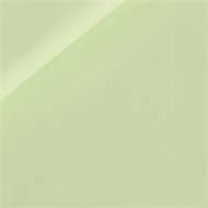 Picture of Solid Color - Fresh Paradise Pastel Green