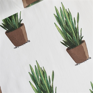 Picture of Sansevieria - Cotton Lawn - Gebroken Wit